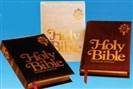 New American Family Bible